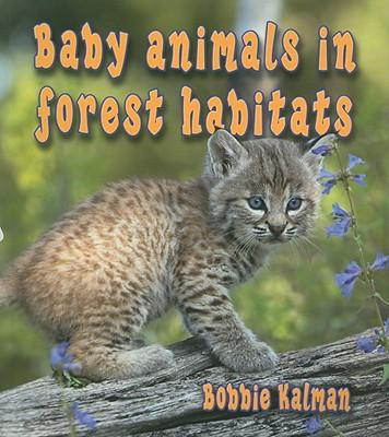 Baby Animals in Forest Habitats By Kalman, Bobbie